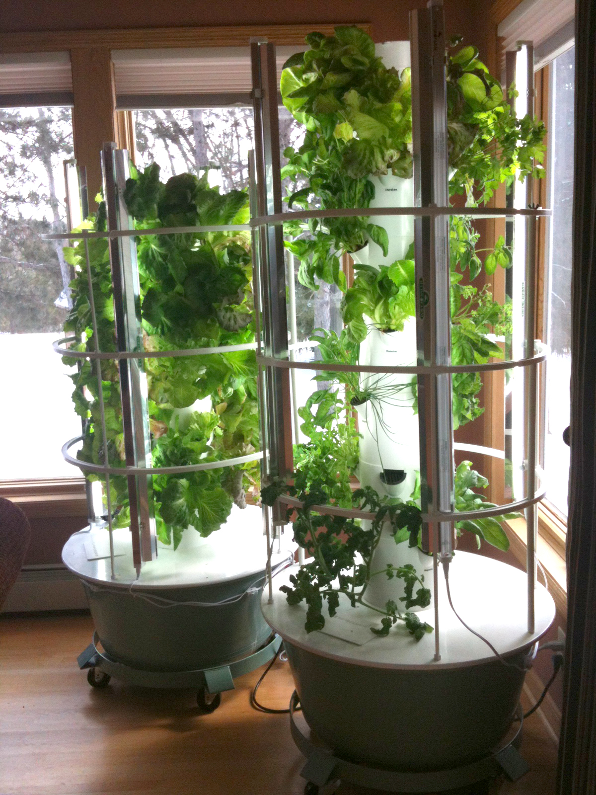 My Latest Healthy Obsession My Tower Garden Elemental