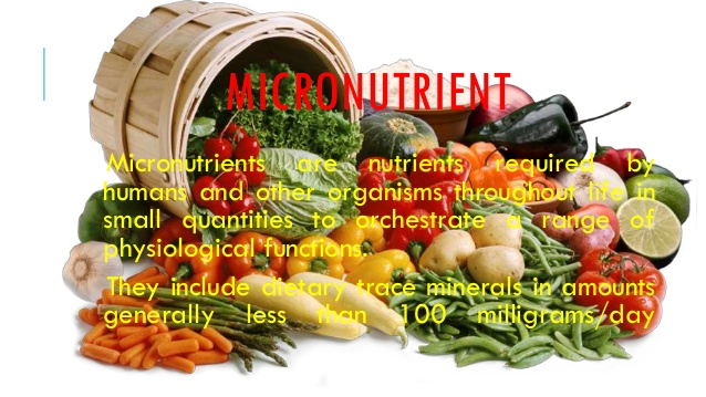 Micronutrients Elemental Esthetics